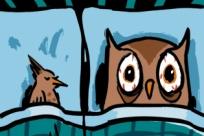 Совы против жаворонков