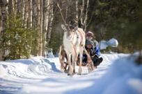 Традиции Финляндии