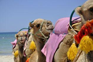 Как выбрать курорт в Тунисе