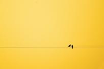 50 идеальных минималистичных фотографий