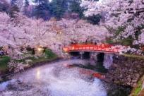 5 самых интересных достопримечательностей Токио