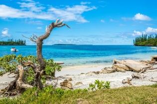 Лагуны Новой Каледонии, разнообразие коралловых рифов и их экосистем