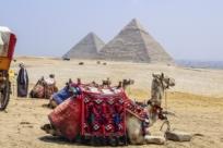 9 главных советов в Египте