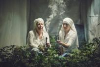 Монашки выращивают марихуану