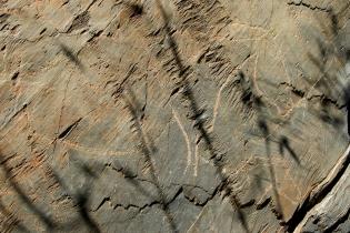 Наскальное искусство эпохи палеолита Сиега Верде