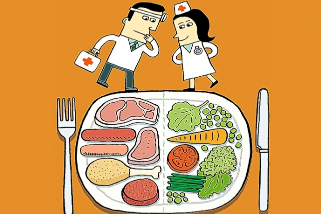 carnivore vs vegetarianism essay In the other side meat eaters are better known as carnivore of-eating-meat html meat eaters vs vs meat eaters vegetarianism in.
