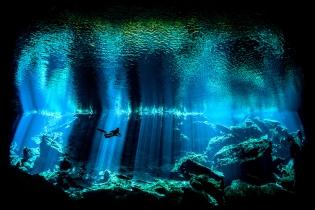 Нырнуть вкрасоту: победители фотоконкурса «Подводный фотограф года»